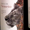 Cantina di Negrar Novello del Veneto 2013 wine label packaging design
