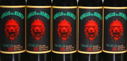 Novello del Veneto 2012 wine